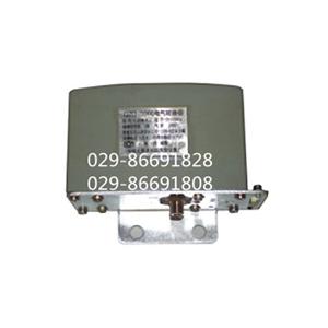 电气转换器 QZD-1000