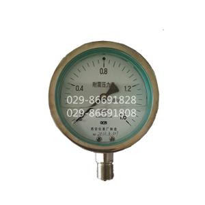 耐震不锈钢压力表YTF-60-Z,YTF-100-Z,YTF-150-Z