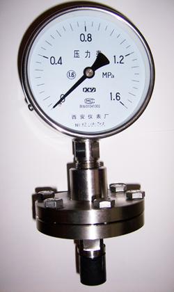 耐腐隔膜压力表YTP-100  YTP-150