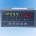 XSE增强型单输入通道仪表 XSE/AH2RT0A1B0S0V0 可打印数显仪