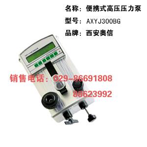 AXYJ-3000BG手持式高压泵 高压检验仪